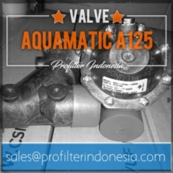 Aquamatic Valve A125 Membrane Indonesia  large