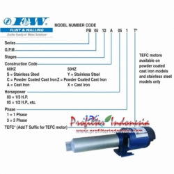 d Flint  Walling RO Booster Pump pro  large